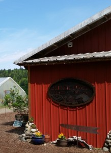 Finnriver's barn-red tasting room stands out against the blue sky